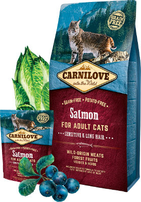 Salmon for adult cats with sensitive digestion, long-haired cats