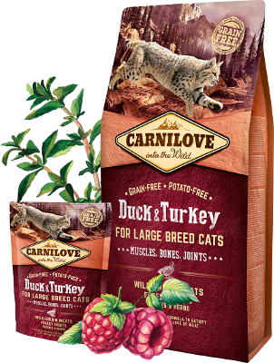 Duck & Turkey for large breed cats