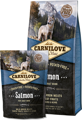 Salmon for adult dogs